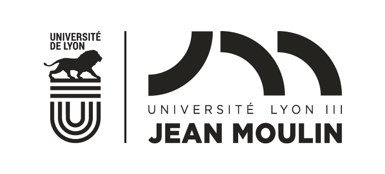 Jean Moulin Lyon 3 University